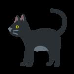⊛ Black Cat Emoji